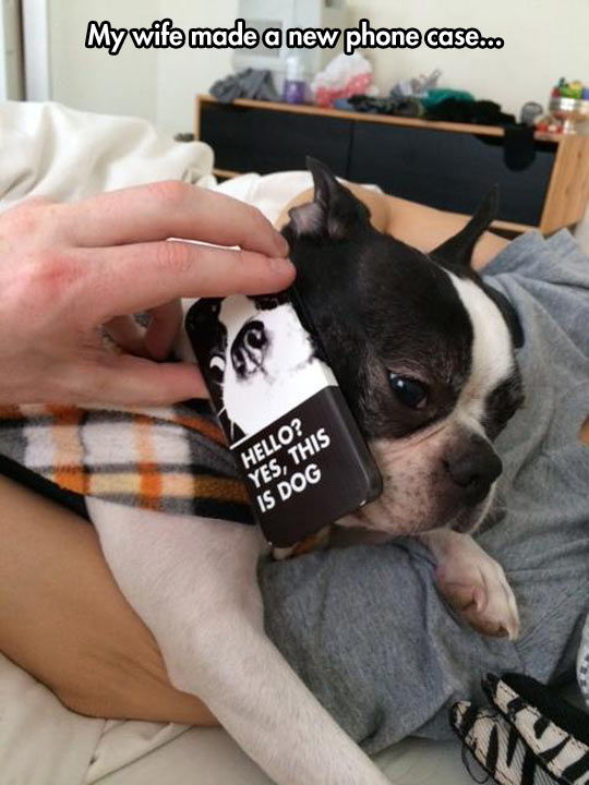 funny-dog-phone-case-puppy