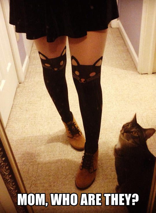 funny-girl-leggings-cat-confused