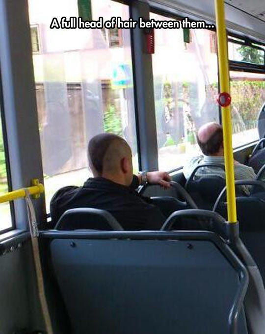 funny-haircut-balding-head-bus