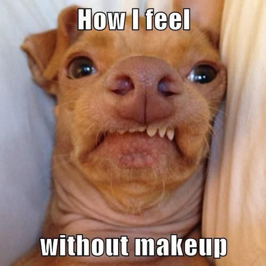 funny-makeup-face-pretty-ugly