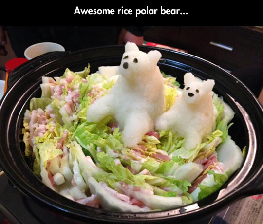 funny-rice-polar-bears-salad