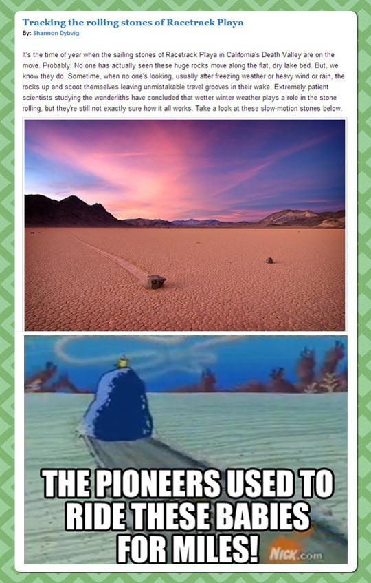Spongebob is based on science…