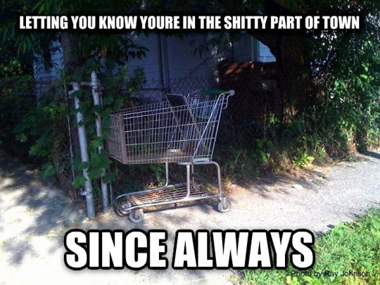 Good Guy Shopping Cart