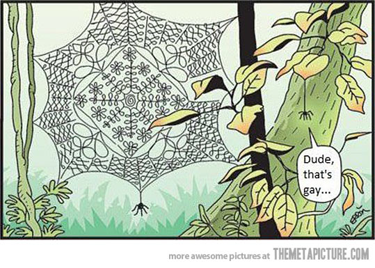 Fabulous Spider Web