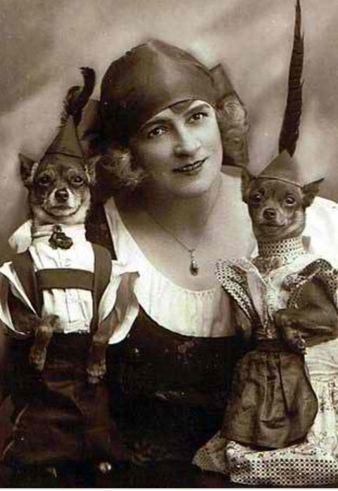 funny-vintage-picture-dogs-cute