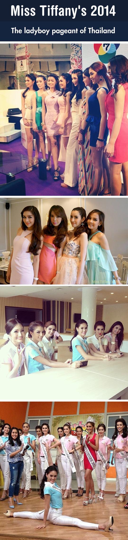 cool-Miss-Tiffany-2014-Thailand-girls
