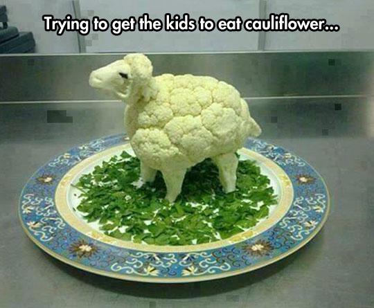 cool-cauliflower-sheep-food-kids