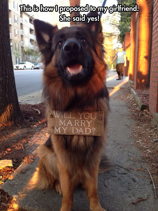 Helping a Best Friend In His Proposal
