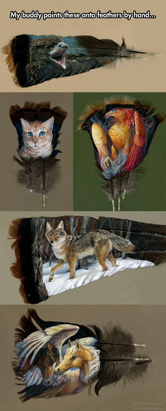 Fine Feathers Make Fine Art