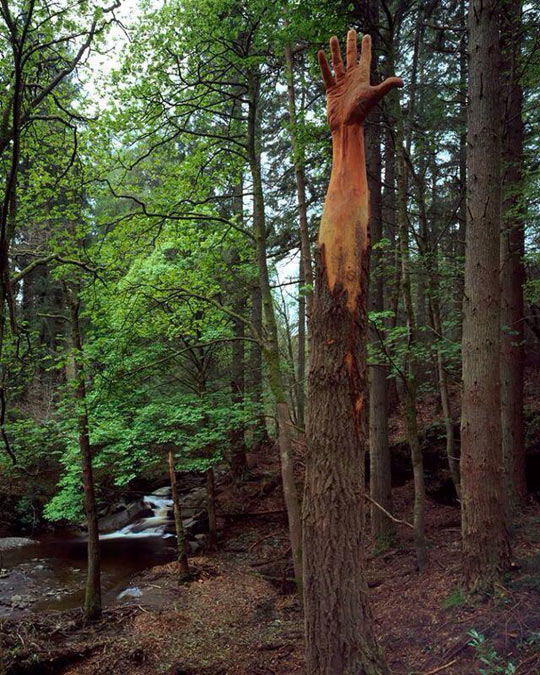 cool-hand-wood-art-craft-forest
