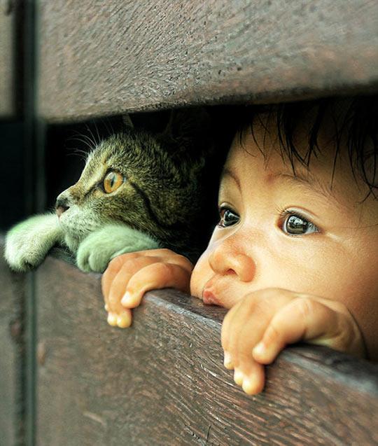 cool-little-friends-kid-cat