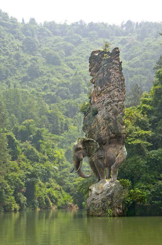 cool-rock-elephant-river-forest
