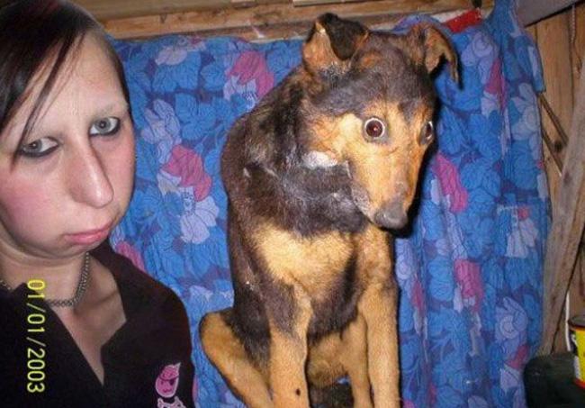 dog_looks_like_owner_03
