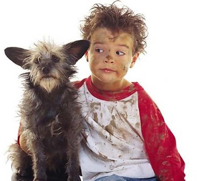dog_looks_like_owner_18