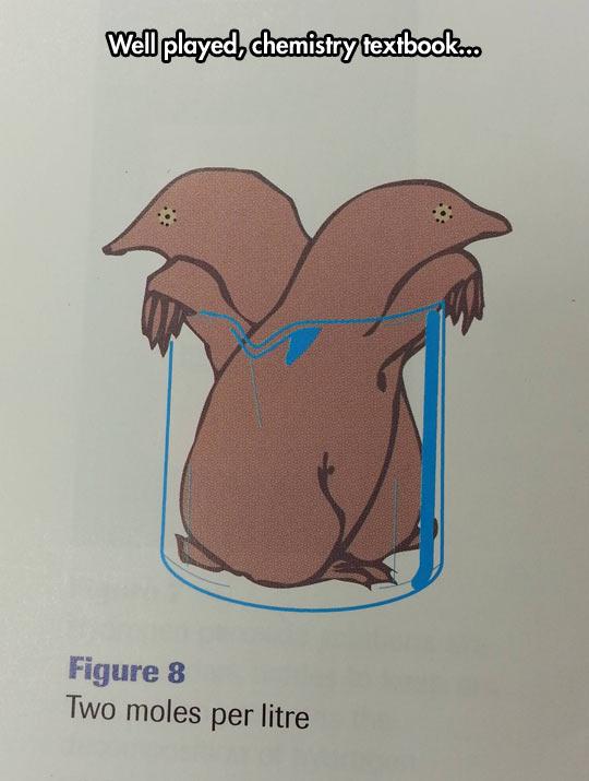 funny-Chemistry-moles-textbook-litre