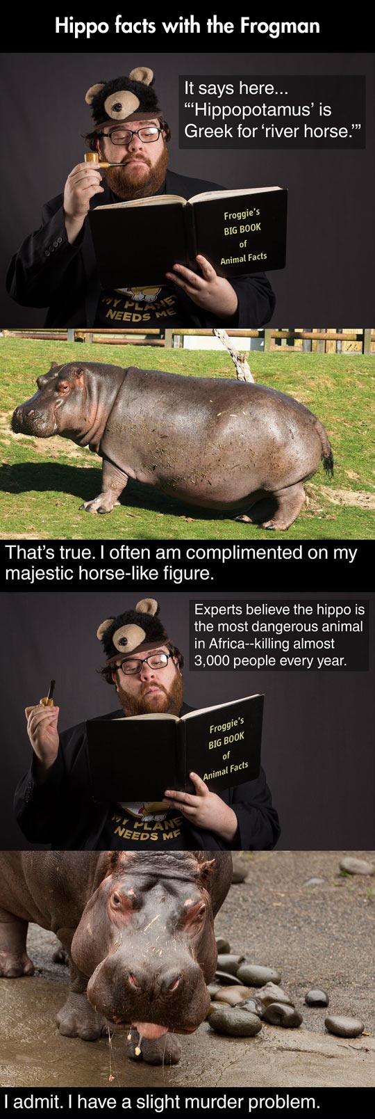 funny-Frogman-Hippos-river-horse