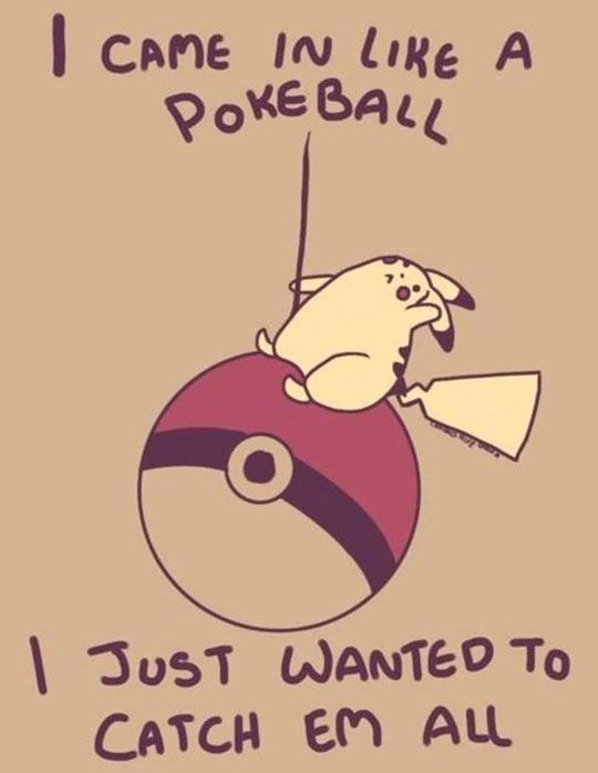 I Came In Like a… Pokeball