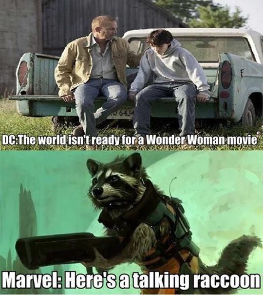 funny-Rocket-Raccoon-Superman-DC-Marvel