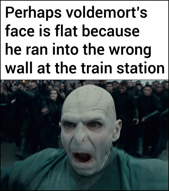 funny-Voldemort-flat-face-train-station