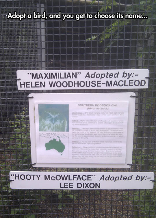 funny-Zoo-bird-name-sign