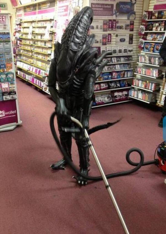 Illegal Aliens Taking Our Jobs