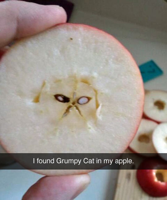 Grumpy Apple
