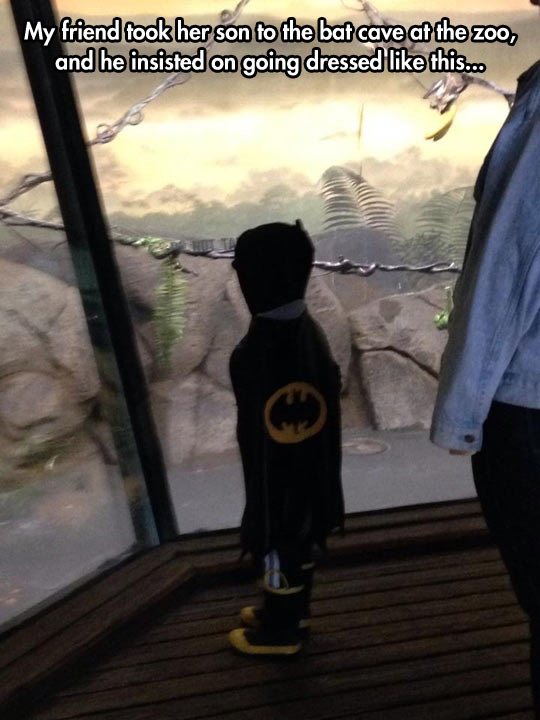 Batman Returned To His Cave