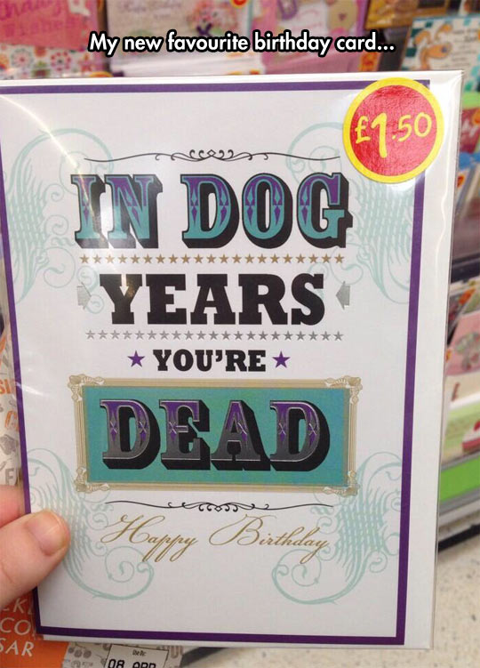 Birthday Cards Are A Dog Eat Kind Of World
