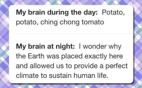 funny-brain-during-day-night-potato