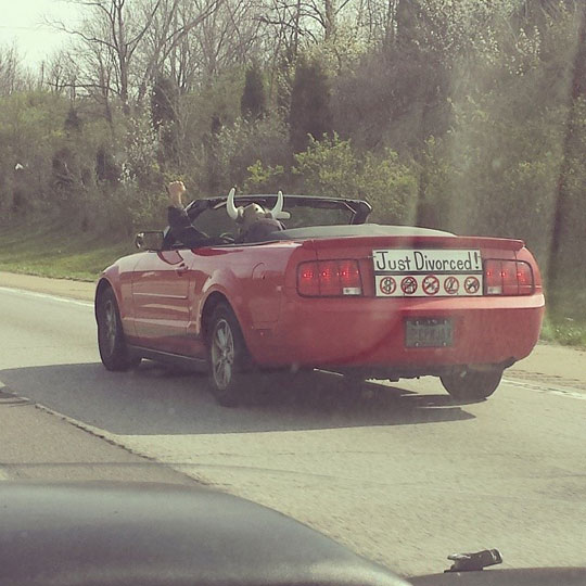 funny-car-just-divorced-guy-happy