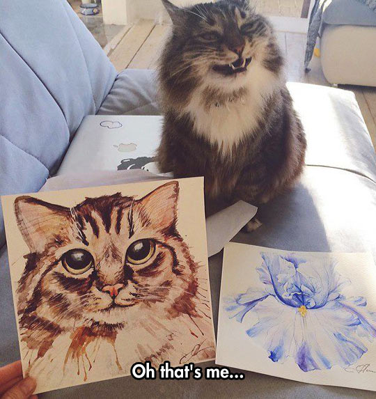 funny-cat-drawing-flower-face-painting
