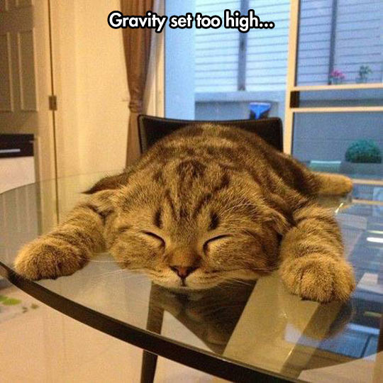 Problems With The Earth's Gravitational Pull