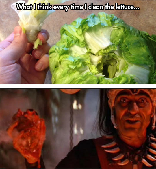 Every Time I Clean The Lettuce