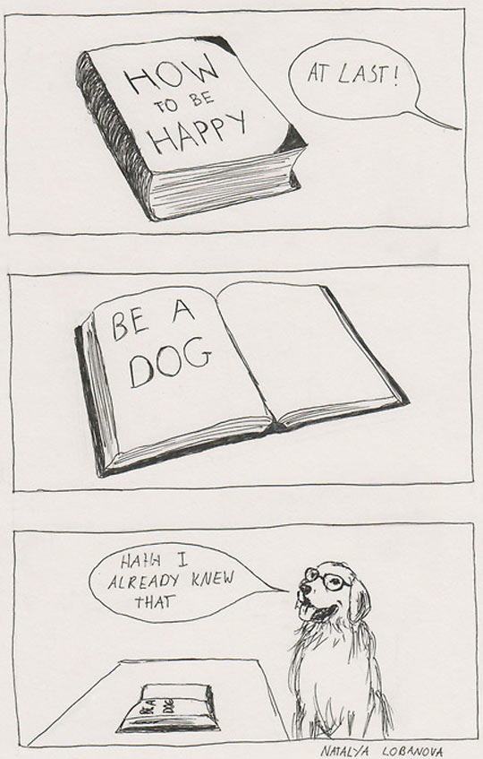 funny-comic-happiness-book-dog-glasses