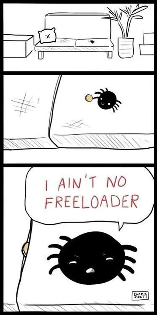 funny-couch-coin-spider-freeloader-comic