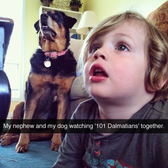 funny-dog-baby-watching-movie-together