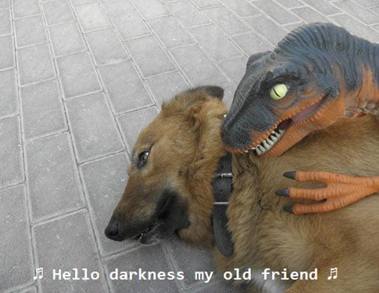 funny-dog-dinosaur-toy-hump
