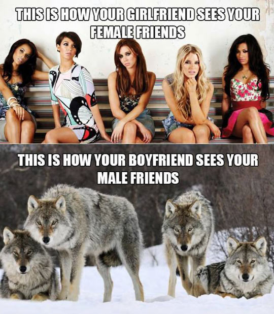 funny-girls-beautiful-girlfriend-sees-wolves