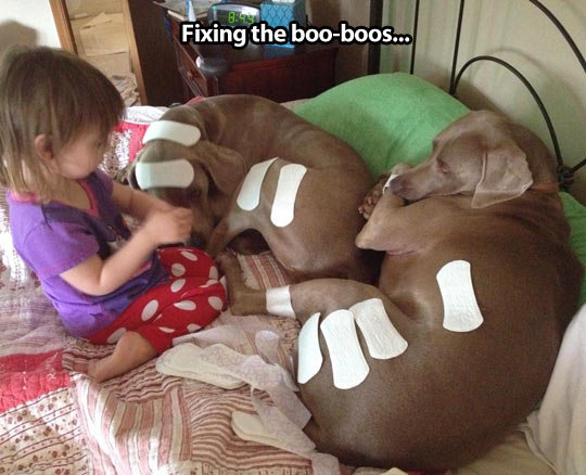 funny-kid-girl-dog-pads-playing