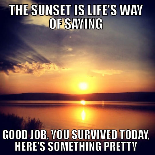 funny-life-gift-sunset-pretty