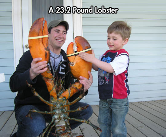 funny-lobster-giant-kid-father-son