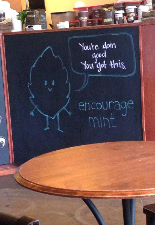 It's Not An Argue-Mint