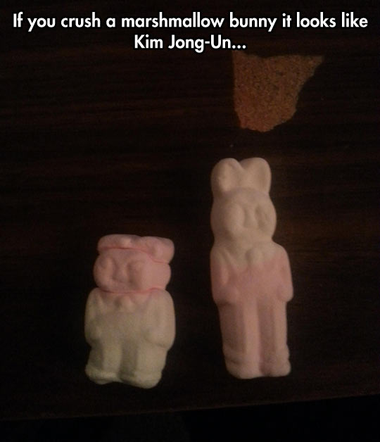funny-marshmallow-bunnies-crush-Kim-Jong-Un