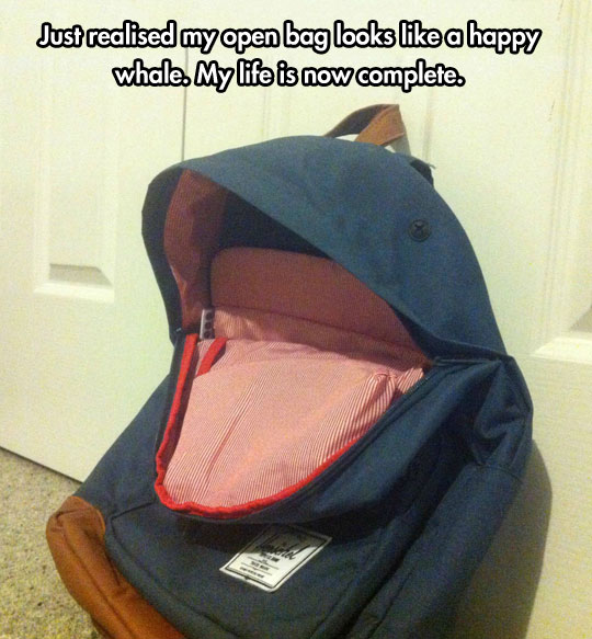 funny-open-bag-whale-mouth