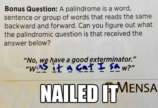 Palindrome Brilliance