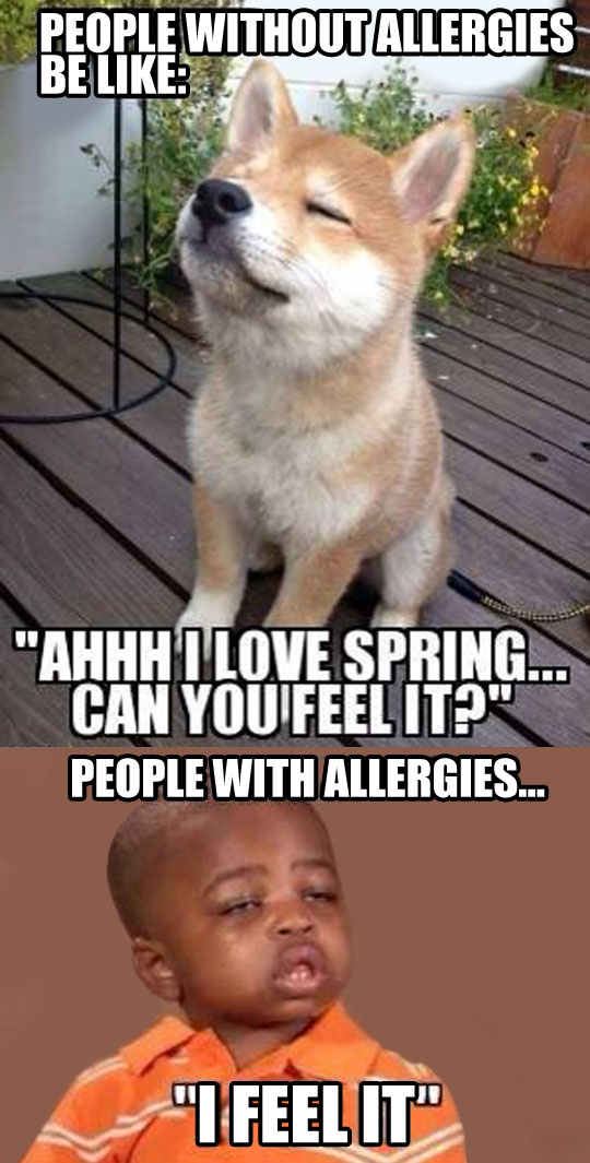 Be Prepared, Spring Is Coming