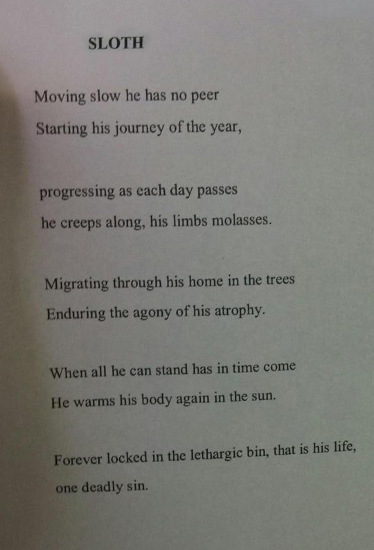 A Sloth Poem For Poetry Class