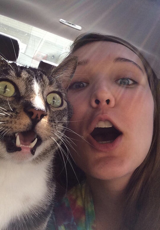 A Perfectly Timed Selfie