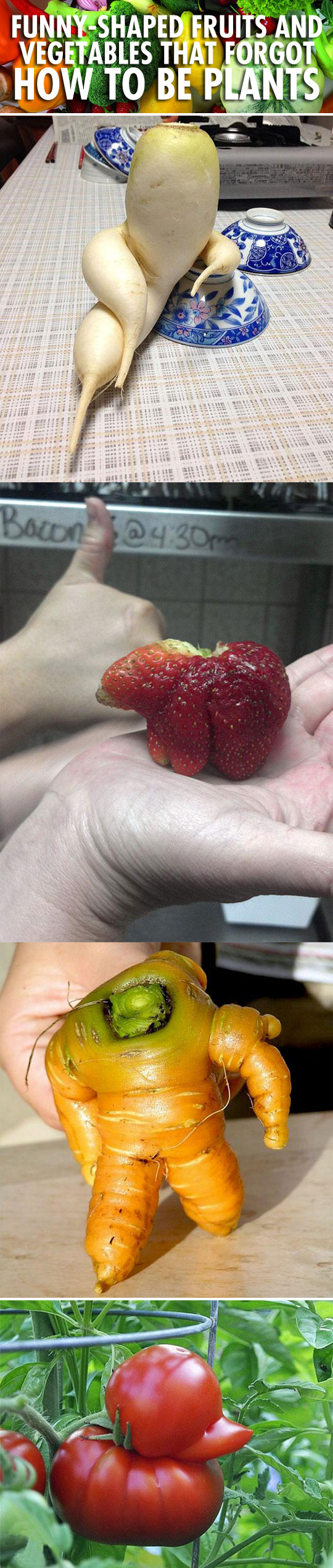Funny-shaped fruits and vegetables that forgot how to be plants...