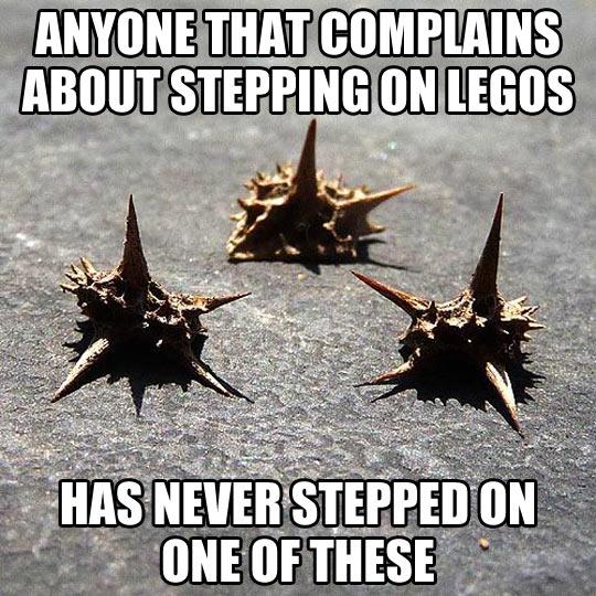 funny-step-thorns-street-goat-head